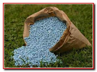 Удобрение почвы под овощные культуры