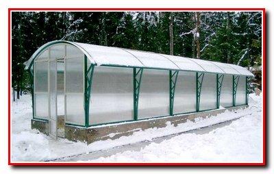 Выращивание огурцов осенью.