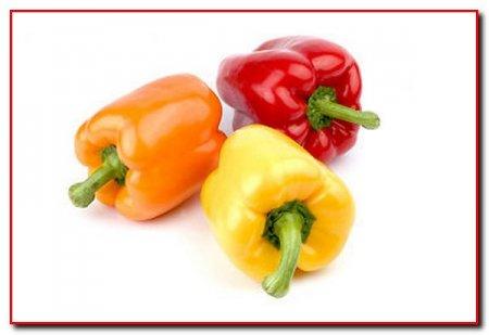 Присмотр за перцем при тепличном выращивании