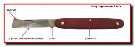 Режущий инструмент. Ножи, пилы, секаторы