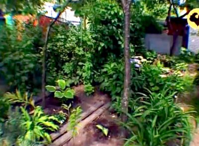 Маленький сад. Ланшафт